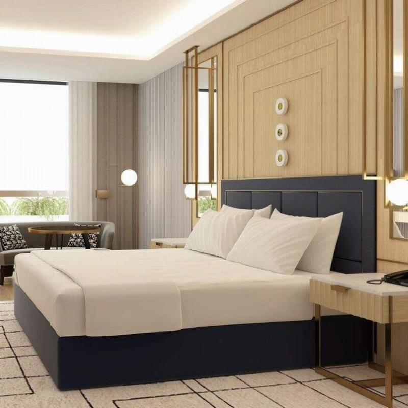 Modern Style Hotel King Room Furniture Sets